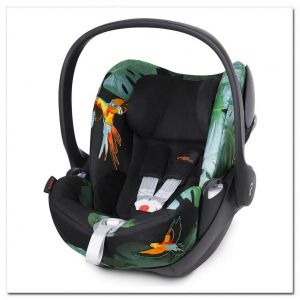 CYBEX Cloud Q, Birds of Paradise